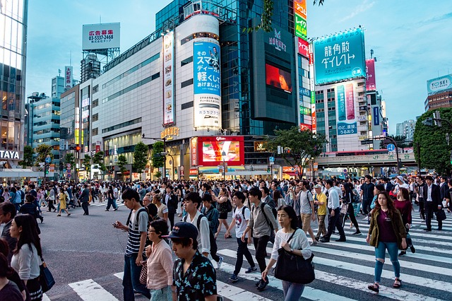 Transfer Options From Haneda Airport To Tokyo