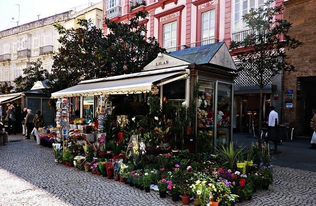 Granada Plaza de las Flores